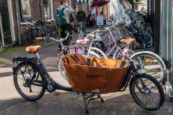 2015_Haarlem_4